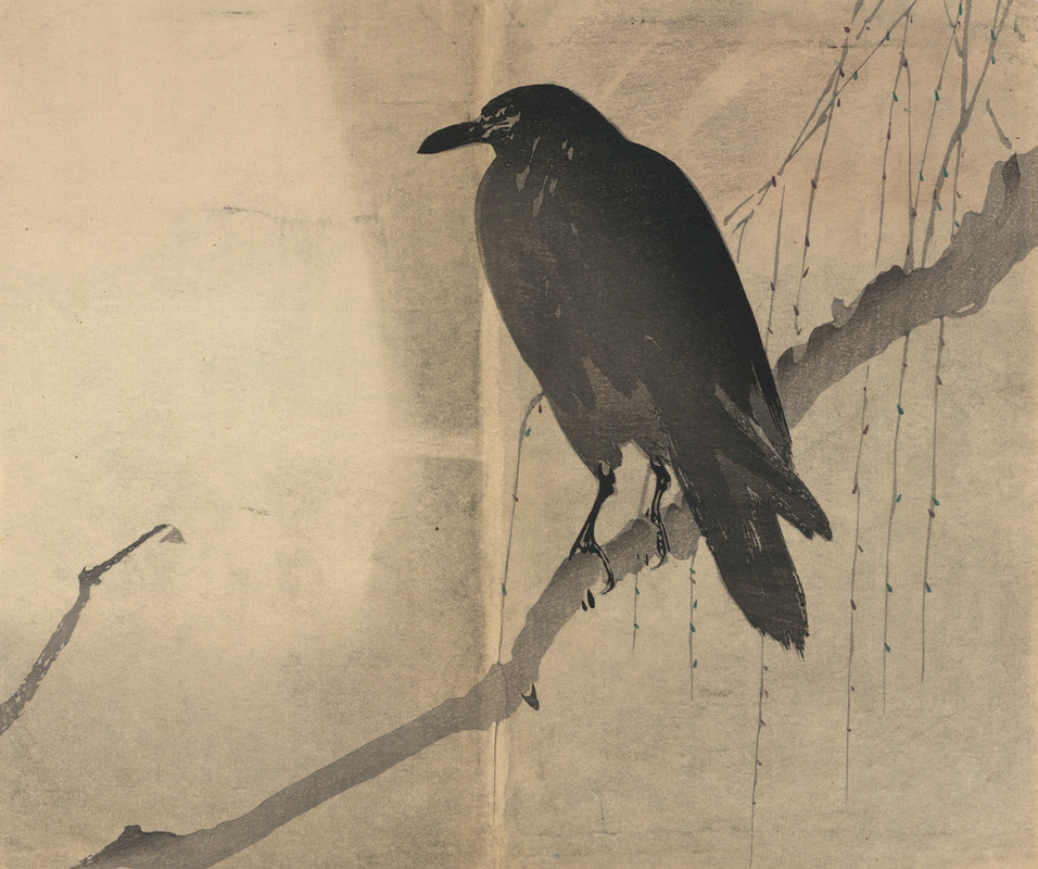 This is a digitized reproduction of an old Japanese ink wash drawing of a Raven sitting on a branch. It is from the late 19th century.