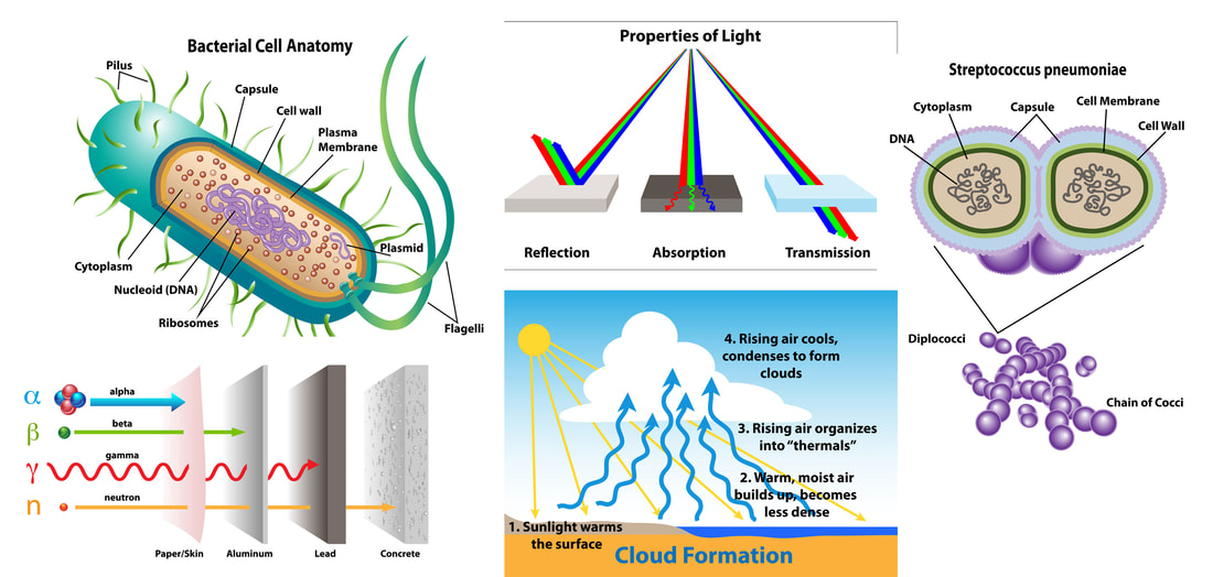 Science graphics for bacterial cell anatomy, streptococcus cells, cloud formation, radiation, and color in light